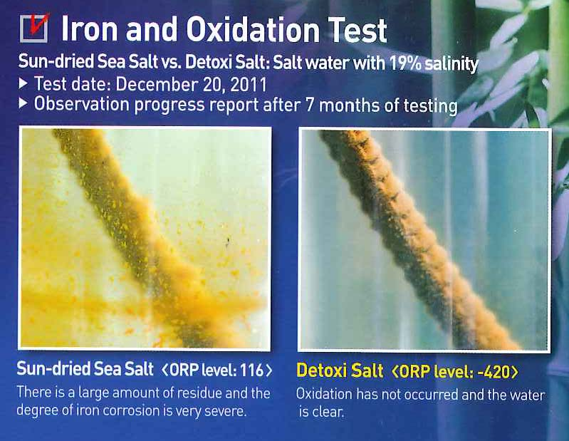 iron and oxidation test